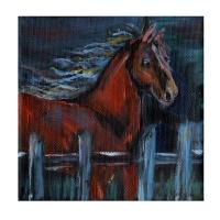 horses-indie-bevkadowart