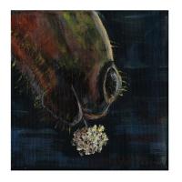 horses-crosby-bevkadowart